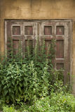 Old wooden door and nettle Royalty Free Stock Images