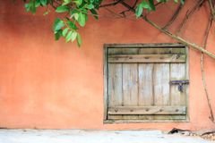 An old wooden door with cement wall and ivy. An old wooden door with orange cement wall and ivy Royalty Free Stock Photos