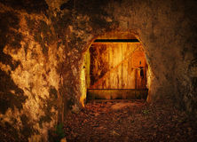 Old wooden door in rock, in dark forest Stock Images