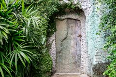 Old wooden door in the rock. Old wooden door in a rock in a forest Royalty Free Stock Photos