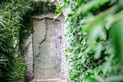 Old wooden door in the rock. Old wooden door in a rock in a forest Royalty Free Stock Photo