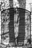 Old wooden door with shadows of trees Stock Photo