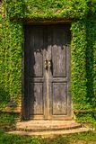 Old wooden door in the wall Stock Image