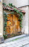 Old wooden double door. Green ivy on tiled canopy Stock Photos