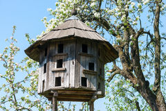 Old wooden dovecote Royalty Free Stock Image