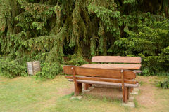 Old wooden dustbin and bench Royalty Free Stock Photography