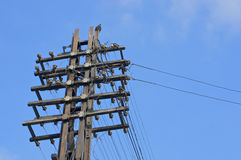 Old wooden electricity post with blue sky Stock Photos