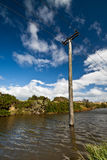 Old wooden electricity pylon Stock Image