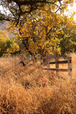 Old Wooden Farm Fence Royalty Free Stock Images