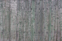 Old wooden fence. Old not painted fence from wooden planks Royalty Free Stock Photo