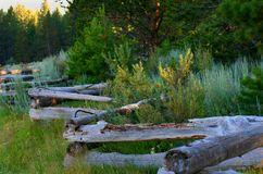 The old wooden fence Stock Photos