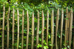 Old wooden fence. An old wooden fence in front of a garden stock image