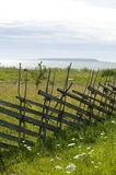 Old wooden fence along a grass field Royalty Free Stock Photography
