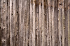 Old wooden fence as background Royalty Free Stock Images