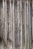 Old wooden fence as background Royalty Free Stock Photos