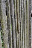 Old wooden fence background in black and white.  Stock Photography