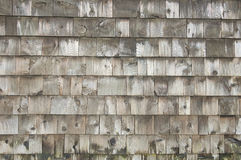 Old wooden fence background. Texture close up Royalty Free Stock Photography