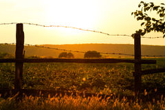 Warm glowing country sunset Royalty Free Stock Photo