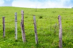 Old wooden fence with barbed wire on a green meadow in a farm. Countryside rural area. In the background, light blue sky with clouds stock images