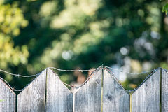 Old wooden fence. With barbed wire on top Stock Images