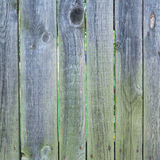 Old wooden fence bars background Royalty Free Stock Photo