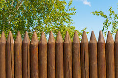 Old wooden fence  and birch on a bluesky background, Russian landscape. Old wooden fence  and trees on the lake coast, Russian landscape Stock Photos