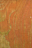 Old wooden fence board with peeling paint. Texture of an old wooden board with peeling paint Royalty Free Stock Images