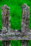 Old wooden fence covered with moss-2 Royalty Free Stock Photos