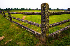 Old wooden fence covered with moss Stock Image