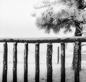 An old wooden fence covered with snow, closeup, black and white. Closeup of an old wooden fence covered with snow, black and white. Winter in Wyoming, USA Royalty Free Stock Image