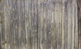 Old wooden fence. With a faded color Stock Image