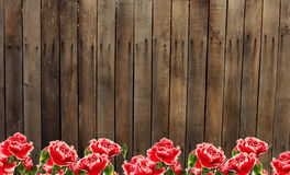 Old wooden fence and flowers. Old wooden brown fence.  Flowers against wooden background. Place for your text Stock Photos