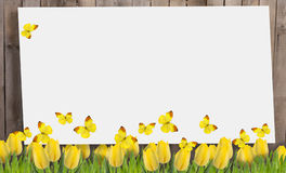 Old wooden fence and flowers. Royalty Free Stock Images