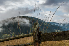 Old wooden fence with forest background. Old wooden fence with clouds forming in the background royalty free stock photography