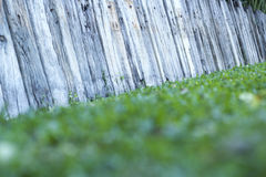 Old wooden fence in garden Stock Image