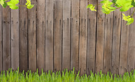 Old wooden fence and grass Royalty Free Stock Photos
