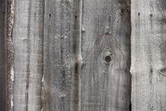 Old wooden fence in a gray Siberian village. Wooden fence in a gray Siberian village Royalty Free Stock Photography