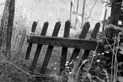 Old wooden fence, monochrome. Stock Photos