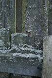 Old wooden fence with moss Stock Photos