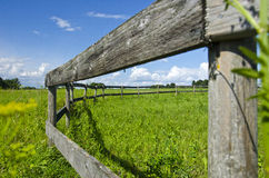 Old wooden fence on nice green summer pasture  meadow Stock Photo
