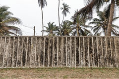 Old wooden fence with palm trees behind Royalty Free Stock Photos