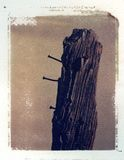 Old wooden fence post with nails. Polaroid image transfer on a cold press watercolor paper (rough texture Royalty Free Stock Images