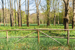 Old Wooden fence at ranch Stock Photos