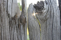 Old wooden fence and a ray of sun in a crack. Royalty Free Stock Images