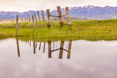 Old wooden fence reflection in the water of a marsh Royalty Free Stock Images