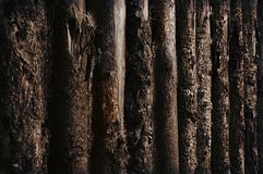 Old wooden fence texture. Texture of old wooden fence made of rough logs Stock Images
