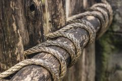 The old wooden fence is tied for durability with ropes, nice and secure. Close-up royalty free stock image