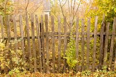 Old wooden fence in the village in autumn.  Royalty Free Stock Photo