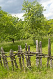 Old wooden fence in village with orchard Royalty Free Stock Images