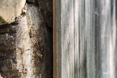 Old wooden fence and wood. Old wooden fence and the wood, excellent wooden background Stock Photos